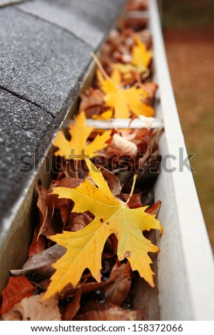 Gutter full of leaves - stock photo