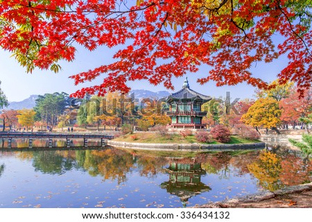 Gyeongbokgung and Maple tree in autumn in Korea. - stock photo