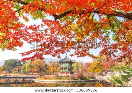 Gyeongbokgung Palace and Soft focus of Maple tree in autumn,Korea. - stock photo