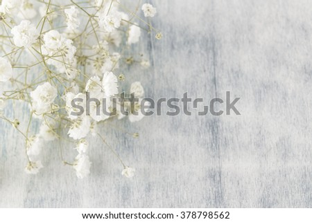 Gypsophila (Baby's-breath flowers), light, airy masses of small white flowers, on wooden background. - stock photo