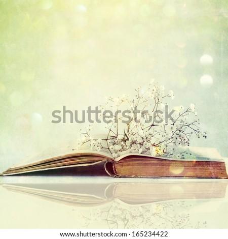 Gypsophila on the opened book - stock photo
