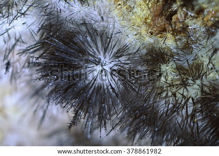 Gypsum crystal needles growing on walls of an abandoned mine in Hodrusa, Banska Stiavnica region, Slovakia.