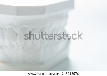 Gypsum model of human jaw on a white background. Selective Focus - stock photo