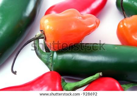 habanero and jalapeno peppers - stock photo