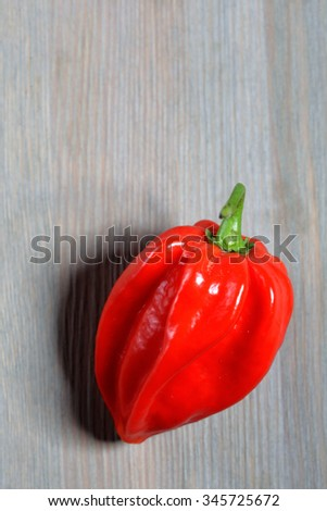 habanero red on wooden background - stock photo
