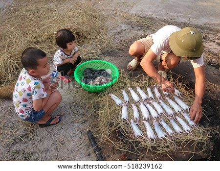 HAI DUONG, Vietnam, November 19, 2016 fathers and children, rural Hai Duong, Vietnam, fire, called (THUI) many field mice, this is their favorite food