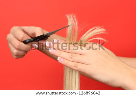 Hair cutting, hair stylist at work with scissors - stock photo