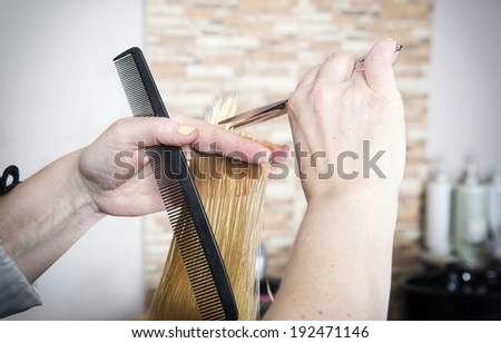 Hairdresser cuts (trims) blond long hair - stock photo
