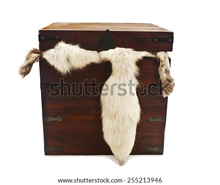 Hairy tail in wooden box.  Isolated on white background - stock photo