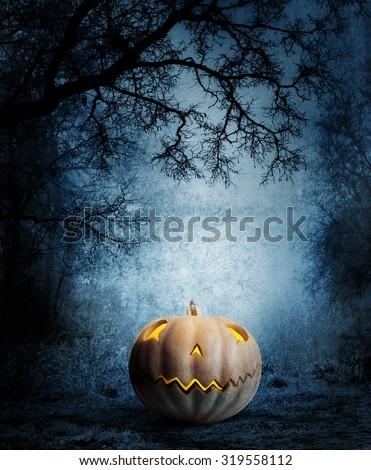 Halloween background. Lonely pumpkin in the dark forest. - stock photo