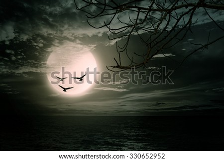 Halloween background, sea with branch and blurred full moon, Dark style. - stock photo