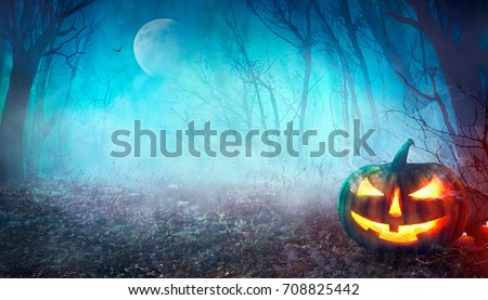 Halloween background. Spooky pumpkin with moon and dark forest. Halloween design with copyspace