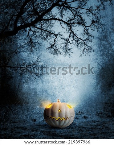 Halloween design - Forest pumpkin. Horror background. - stock photo