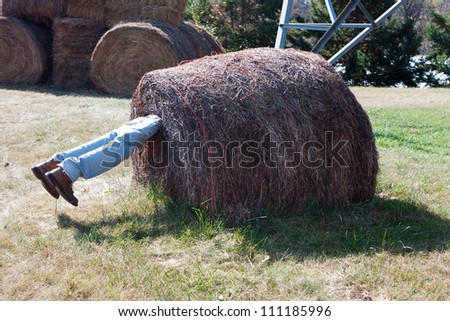 Halloween Display person trapped in haybale. - stock photo