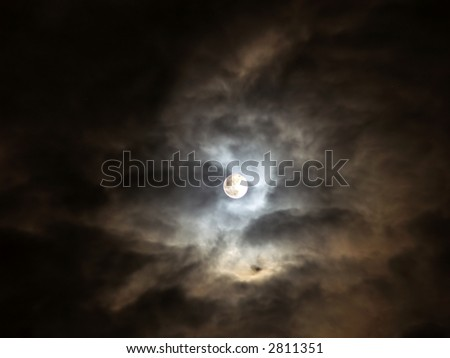 Halloween holly moon - stock photo