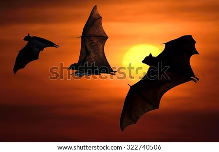 Halloween night with bats flying at sunset - stock photo
