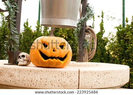 Halloween pumpkin and skull in a well - stock photo