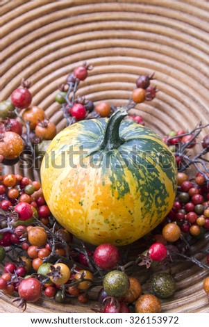 Halloween pumpkin, decorative composition