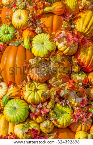 Halloween pumpkins and leaves natural background - stock photo