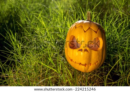 Halloween scary pumpkin jack-o-lantern with a smile in green grass - stock photo