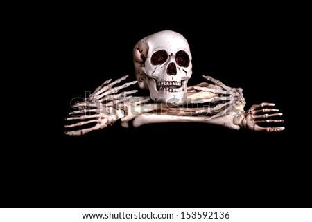 Halloween Scary Skeleton - stock photo