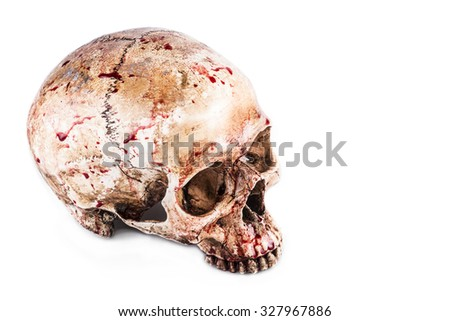 Halloween skull - stock photo