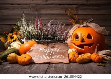 Halloween still life with pumpkins and Halloween holiday text - stock photo