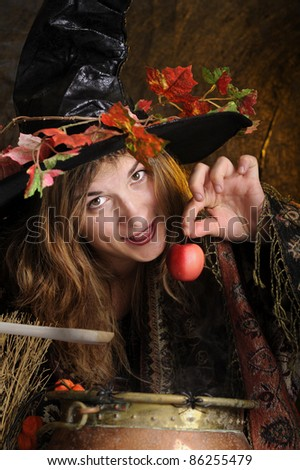 halloween witch cooking in a copper boiler - stock photo
