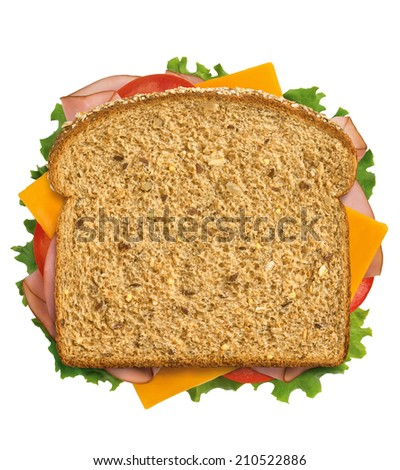 Ham and Cheese Sandwich on whole grain bread - stock photo