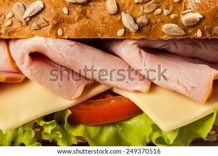 Ham sandwich with lettuce, cheese, tomato close up - stock photo