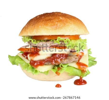 hamburger burger isolated - stock photo