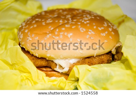 Hamburger Close-up
