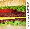 hamburger closeup - stock photo