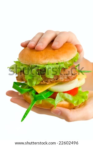 hamburger holding in hands