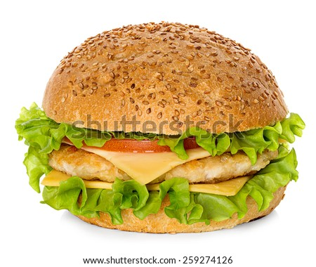 Hamburger isolated on white - stock photo