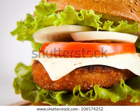 hamburger with fish cutlet and vegetables - stock photo