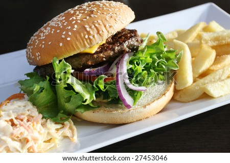 Hamburger with fries and cole slaw - stock photo