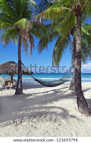 Hammock between two palm trees beside the ocean on a tropical resort. - stock photo
