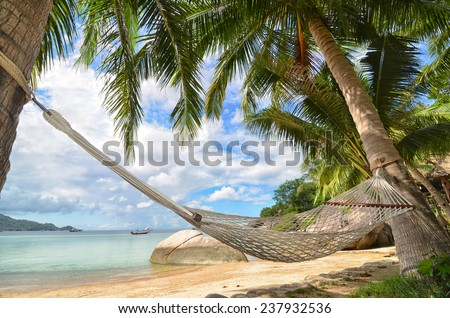 Hammock hanging between palm trees at the sandy beach and sea coast - stock photo
