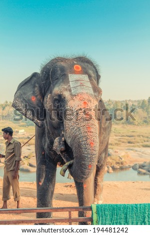Hampi Elephant - stock photo