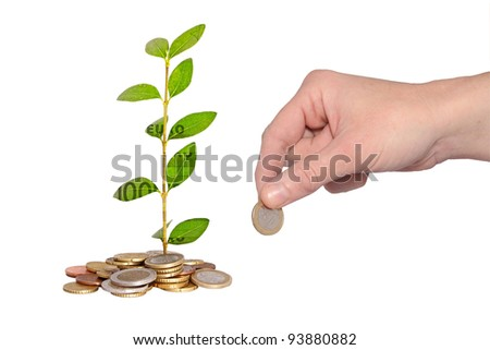 hand adding coin to money plant - stock photo
