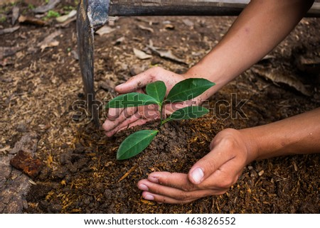 Hand are used to planting tree, Back to nature.