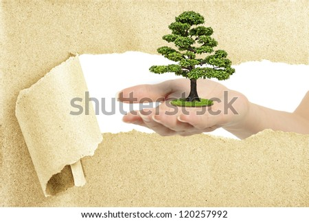 Hand break through paper with a tree - stock photo