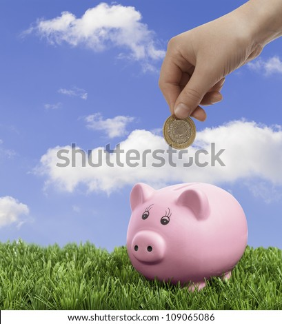 Hand depositing coin into piggy bank - stock photo