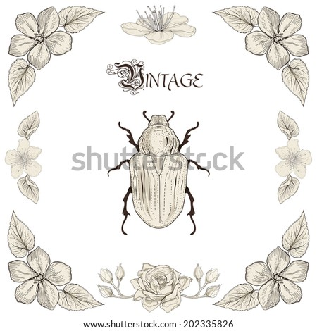 Hand drawing beetle flowers and leaves decorative floral frame Vintage engraving style. Raster copy - stock photo
