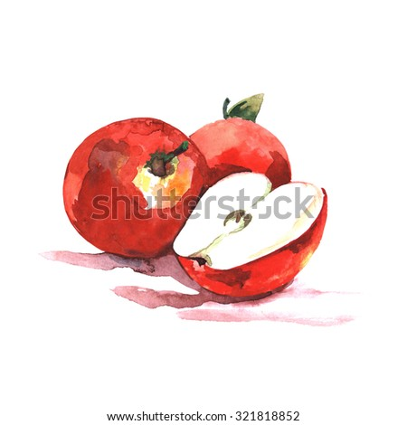 Hand drawn apple watercolor  - stock photo