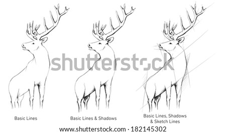 Hand Drawn Deer Buck - stock photo