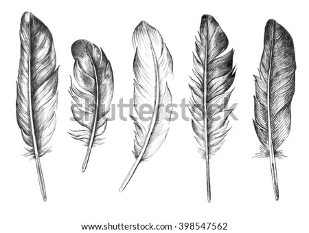 Hand drawn feathers set on white background - stock photo