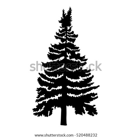 how to draw pine tree silhouette