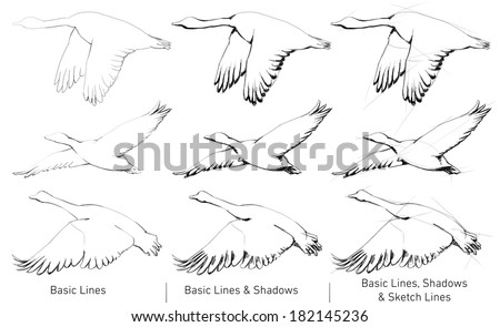 Hand Drawn flying wild ducks - stock photo